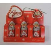 Pai Natal Regina